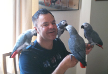 Wayne Cathey with his African Greys
